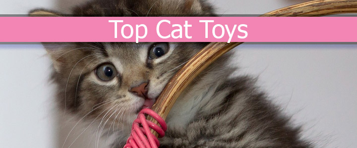 Top Cat Toys